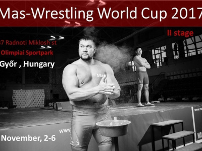 Mas-Wrestling World Cup 2017. Regulations of the 2nd stage